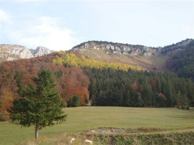 couleurs d'automne à l'attéro des Espinasses