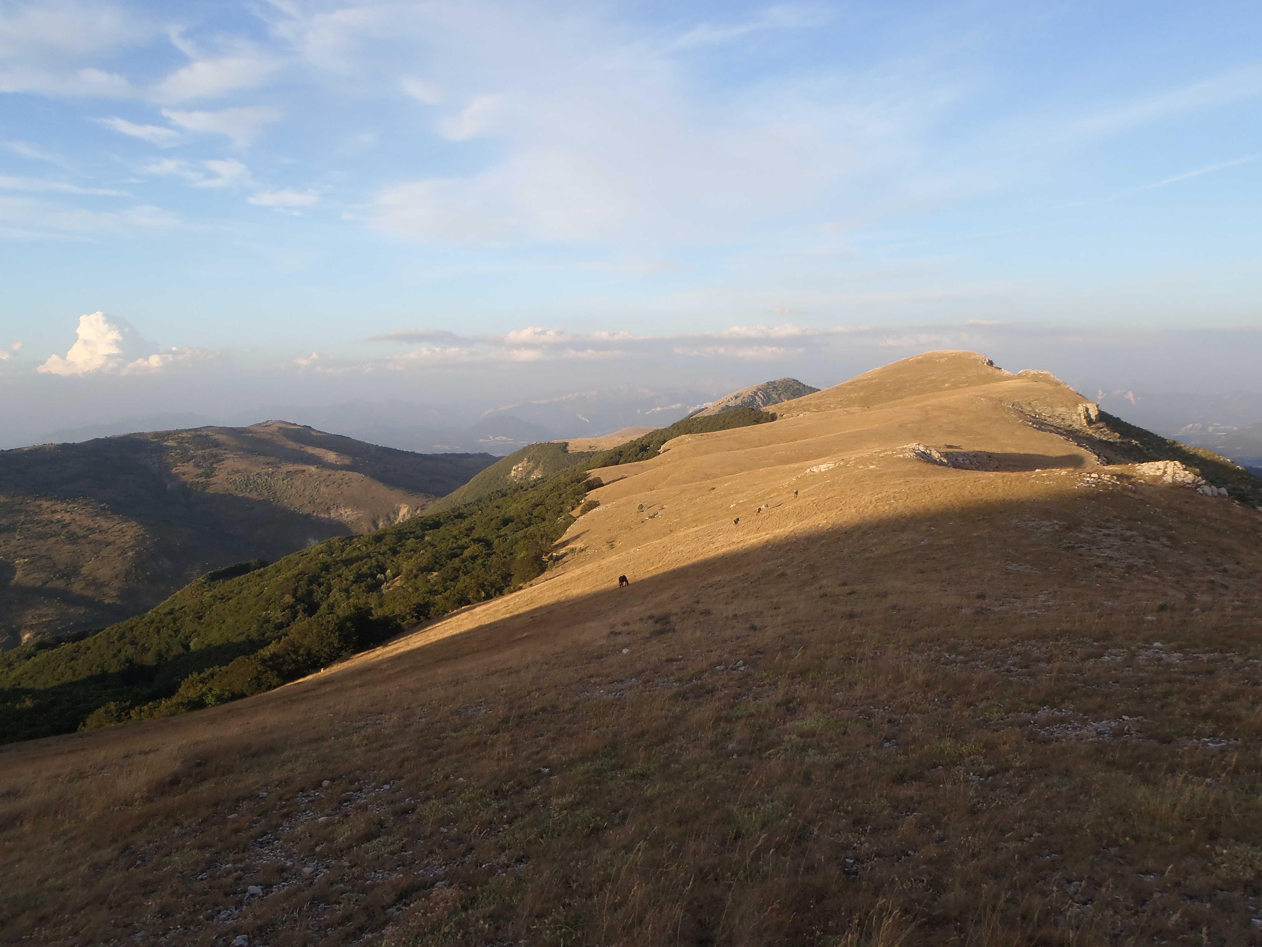 1er bivouac: montagne de la marre et ses chevaux sauvages