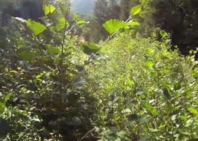 Rando-cross en Belledonne par une journée d'août