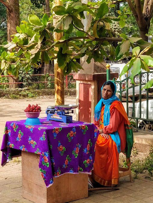 Voyage en Inde – Décembre 2019