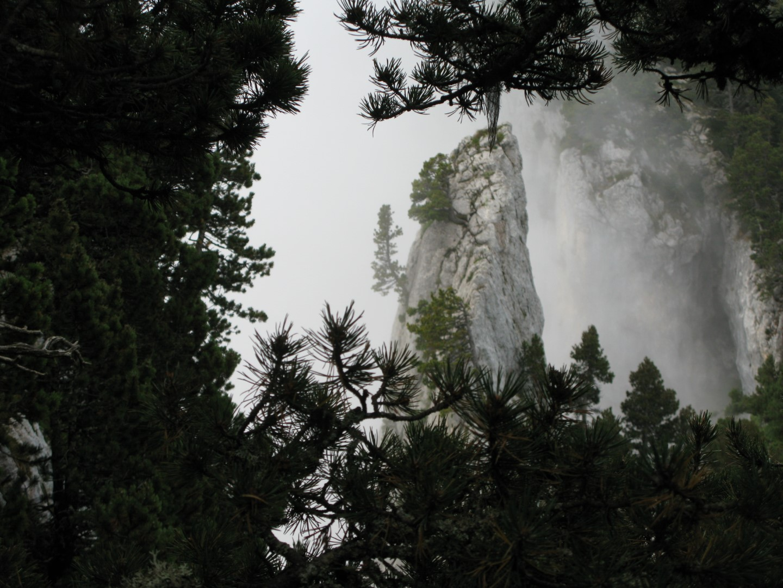 Une aiguille de roche dans la brume côté Grésivaudan